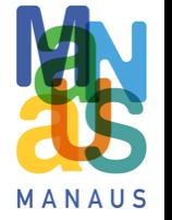 manaus+small